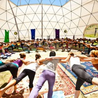 Real Reasons to Attend a Yoga Festival /// This Yoganonymous Article Tells It Straight