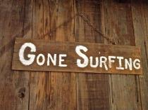 hobie-gone-surfing